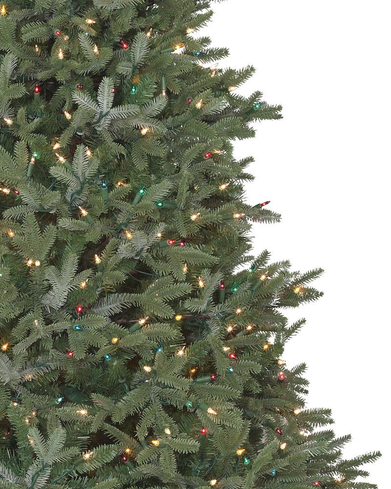 Full Width Fraser Fir Artificial Christmas Trees - Balsam Hill