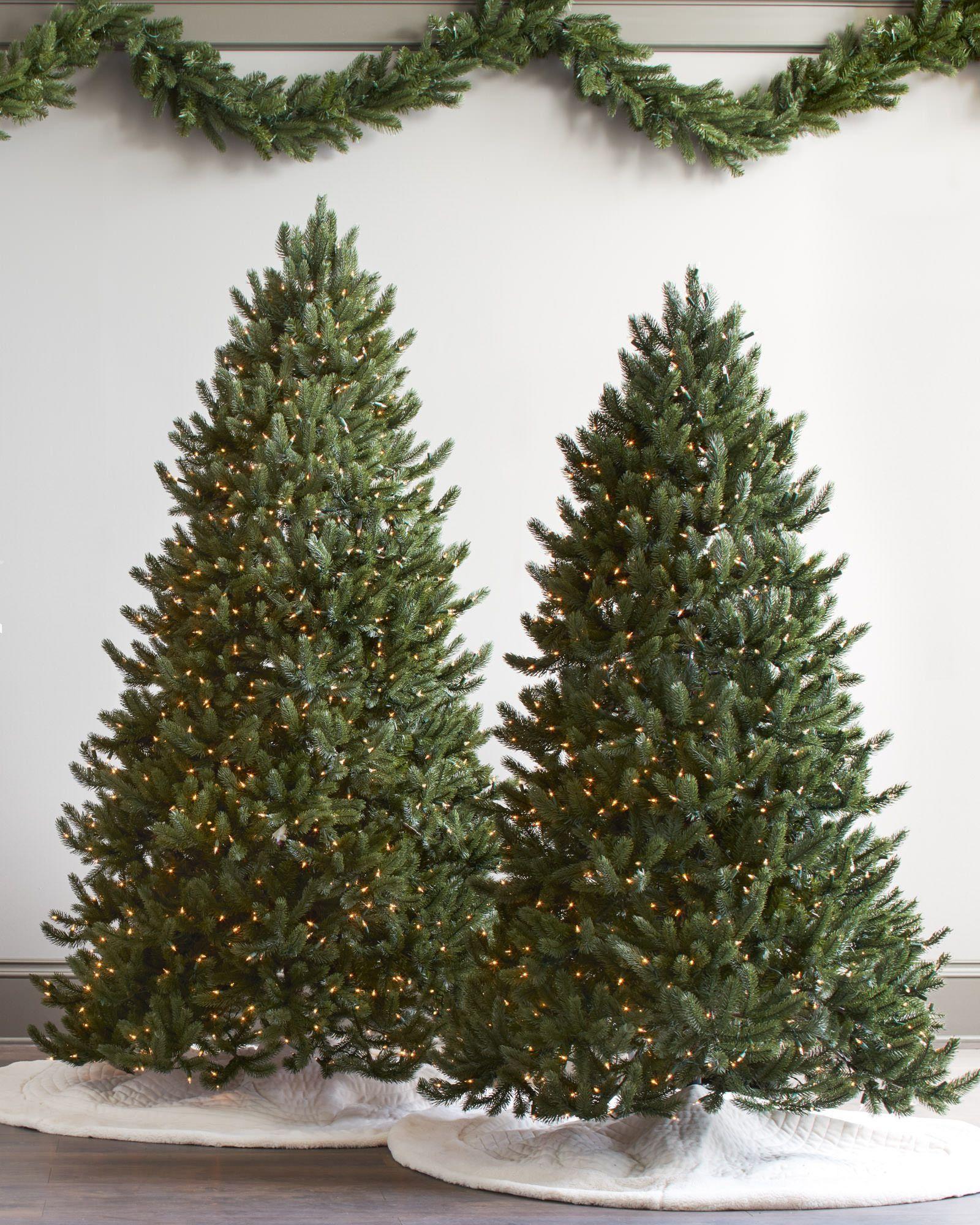 Vermont White Spruce Tree | Balsam Hill
