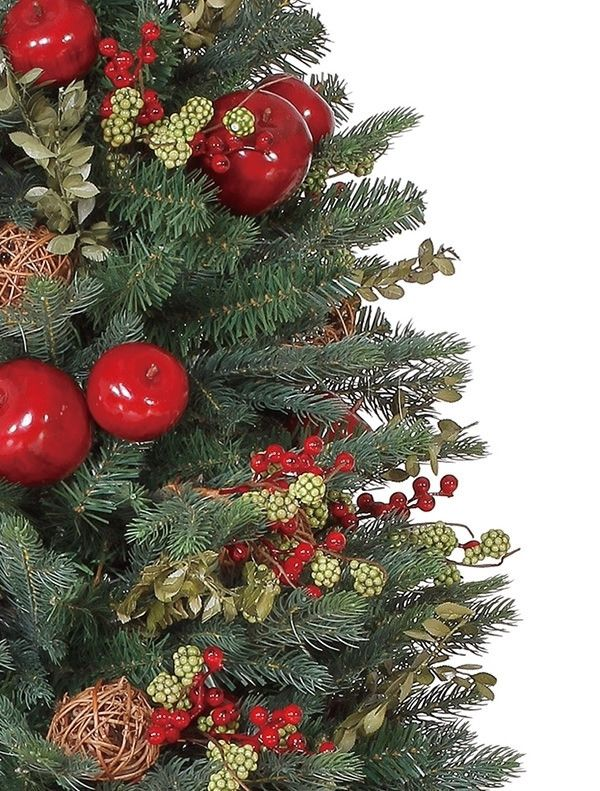 Norway Spruce Potted Christmas Tree | Balsam Hill