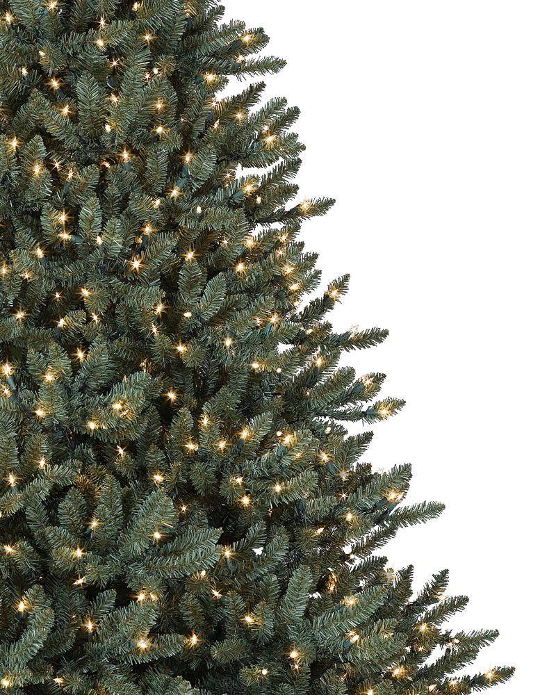 blue spruce christmas tree balsam hill