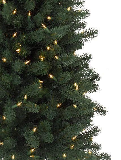 ... Sonoma Slim Pencil Tree 2 ...