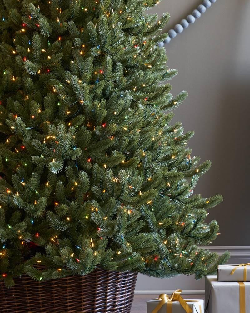 vermont white spruce narrow alt - White Spruce Christmas Tree