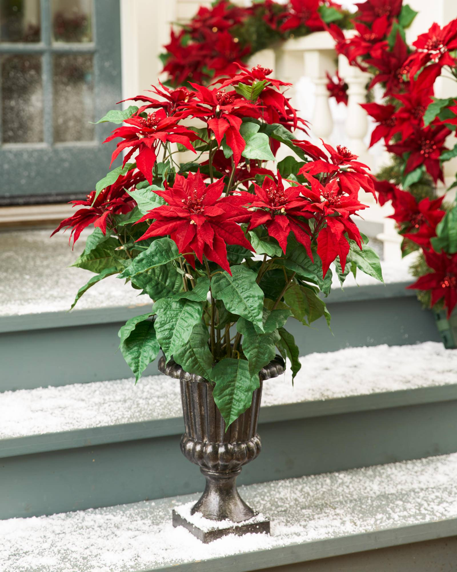 Outdoor Led Battery Operated Poinsettia Topiary Balsam Hill