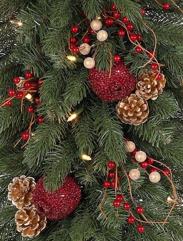 vermont white spruce teardrop alt - White Spruce Christmas Tree